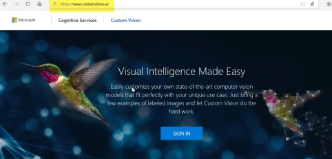Custom Vision Service Home Page